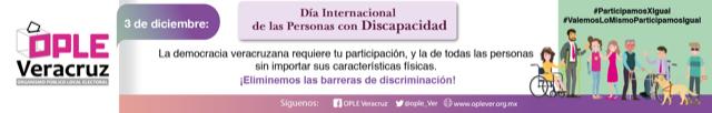 1-31-discapacidad