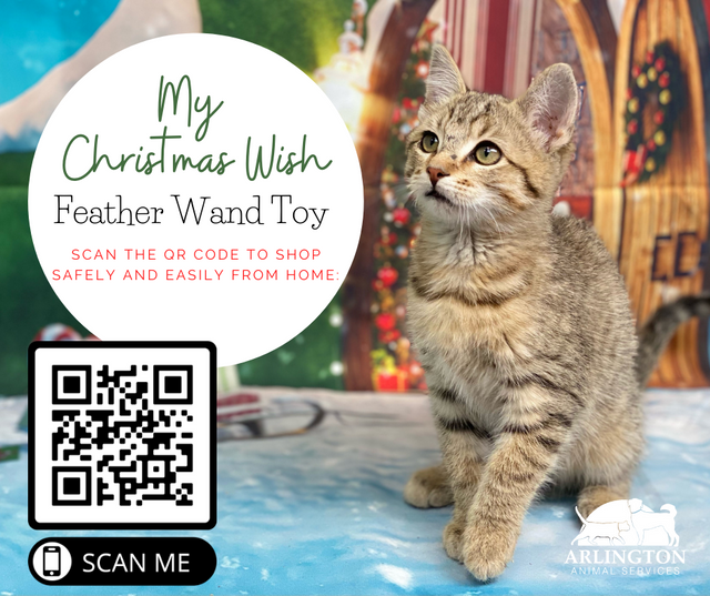 Animal-Services-2020-Angel-Tree-002.png