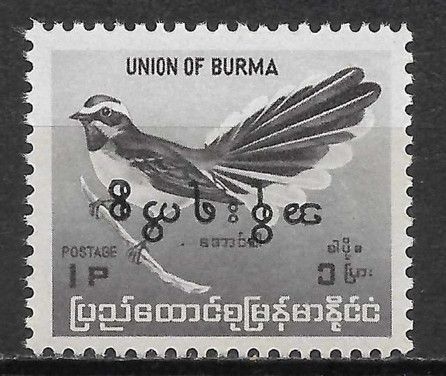 Burma-180-D