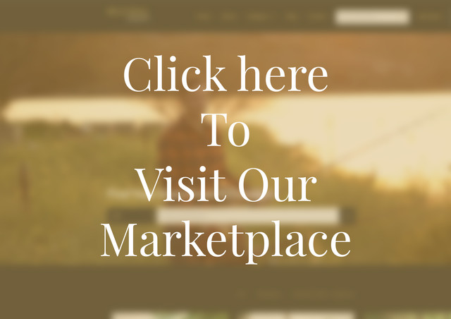 Our Marketplace