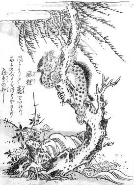 Sekien-Furi