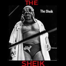 TheSheik.jpg