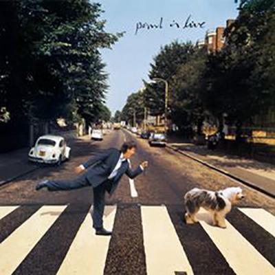 Paul McCartney - Paul Is Live (2019) mp3 320 kbps