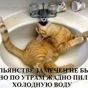 1348807440-v-pyanstve-zamechen-ne-byl-no-po-utram-zhadno-pil-holodnuyu-vodu