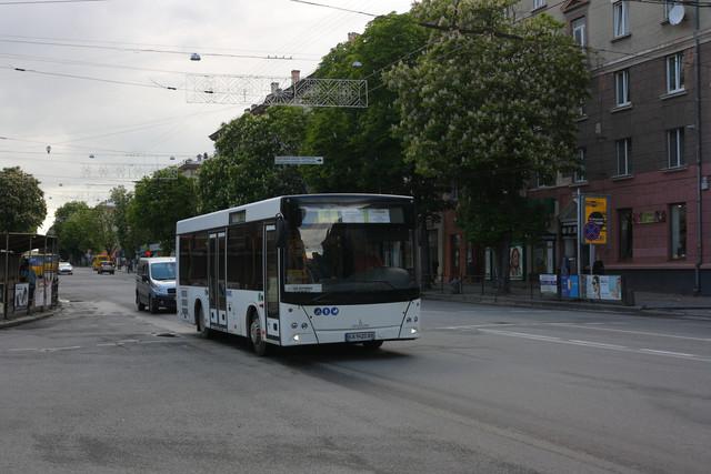 IMG-8693.jpg