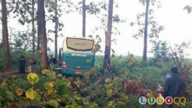 4 Kisah Horor Naik Bus Hantu, Antar Kota Hanya Ditempuh 5 Menit