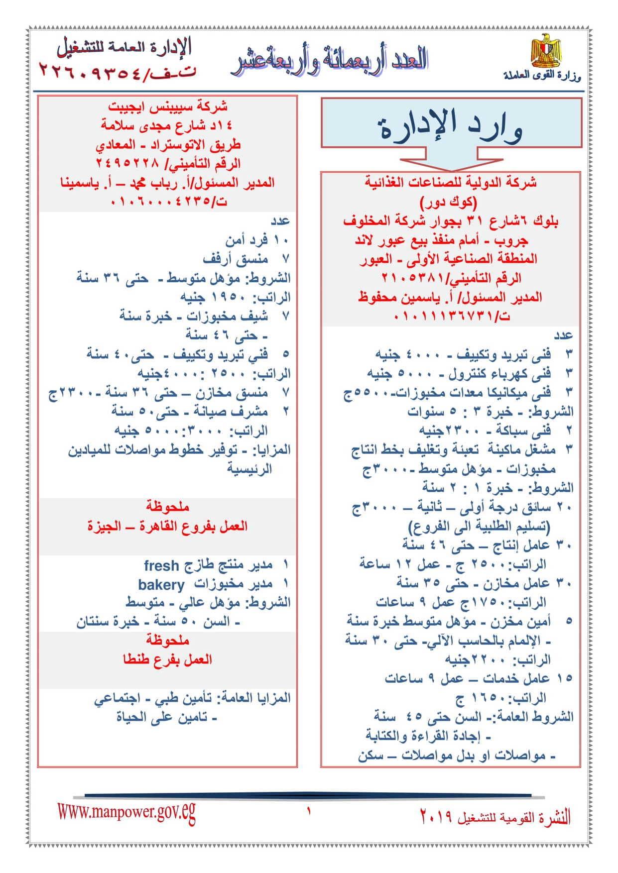 وظائف وزارة القوي العاملة 2019