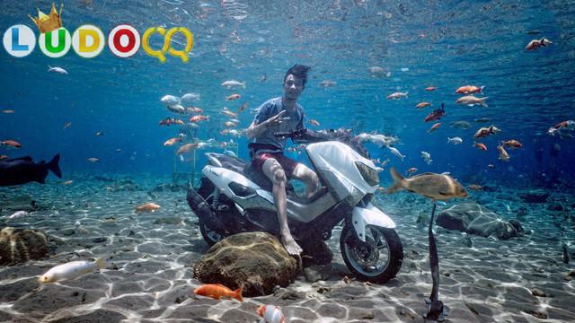 Wisata Klaten Umbul Ponggok dan Tempat Menarik di Sekitarnya