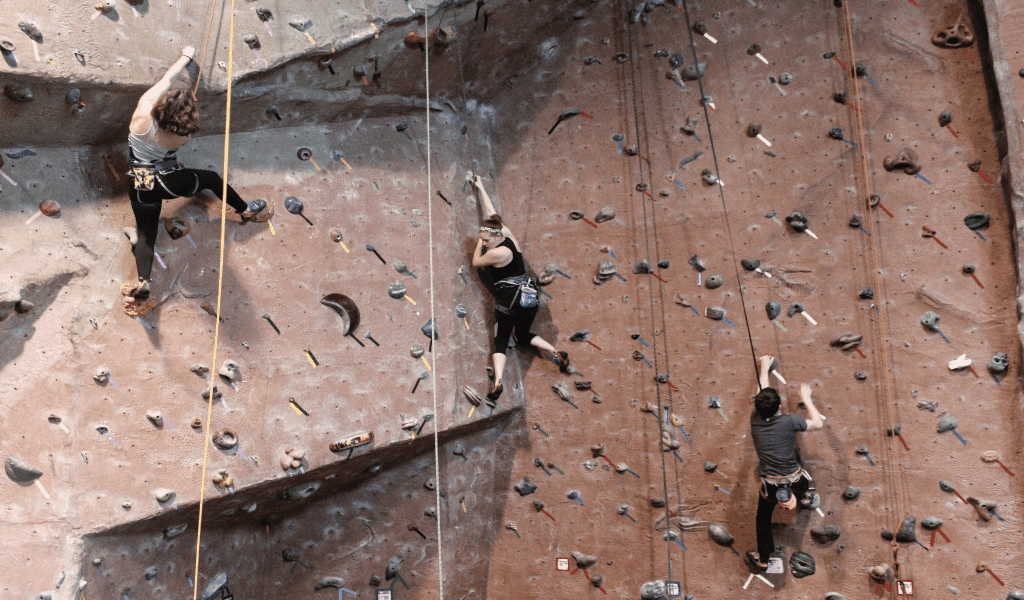 The Unusual Secret Into Lunar Glide Outdoor Rock Climbing Wall Found