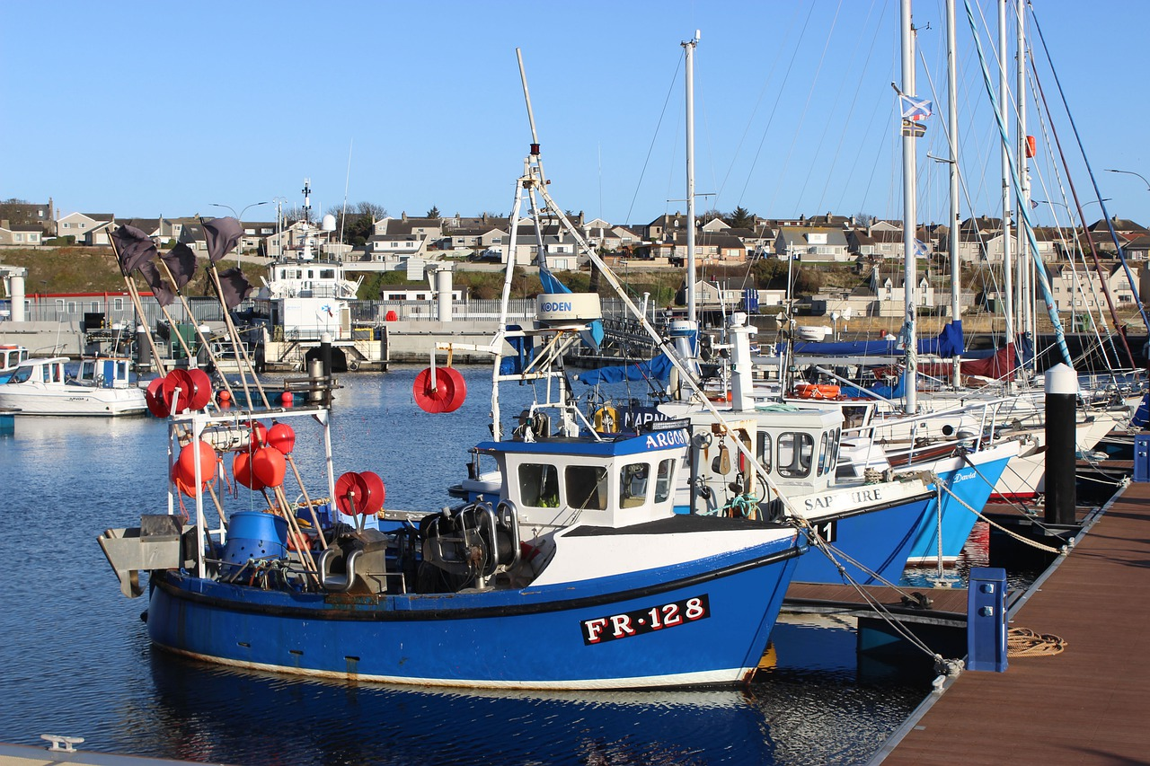 wick harbour, tour of Caithness