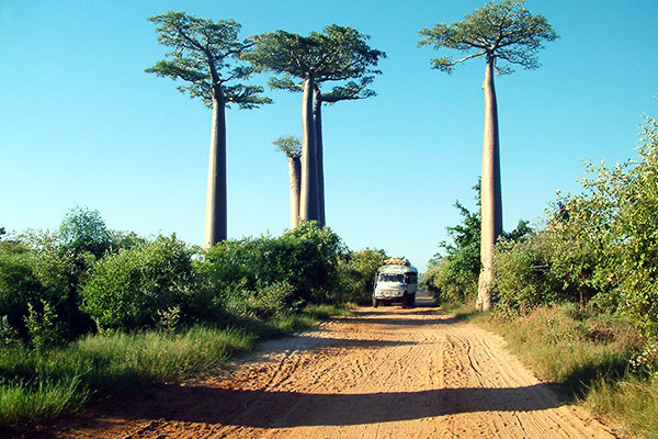 Kenya Travel Guide Getting around