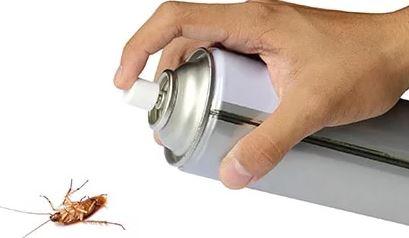 Информация для тех, кого беспокоят вредные насекомые Nasek2