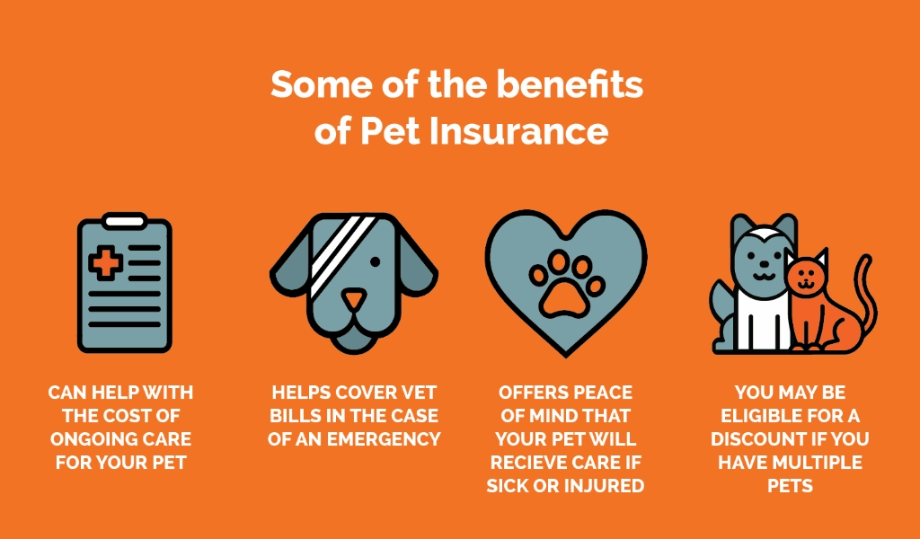 Complete Pets Insurance