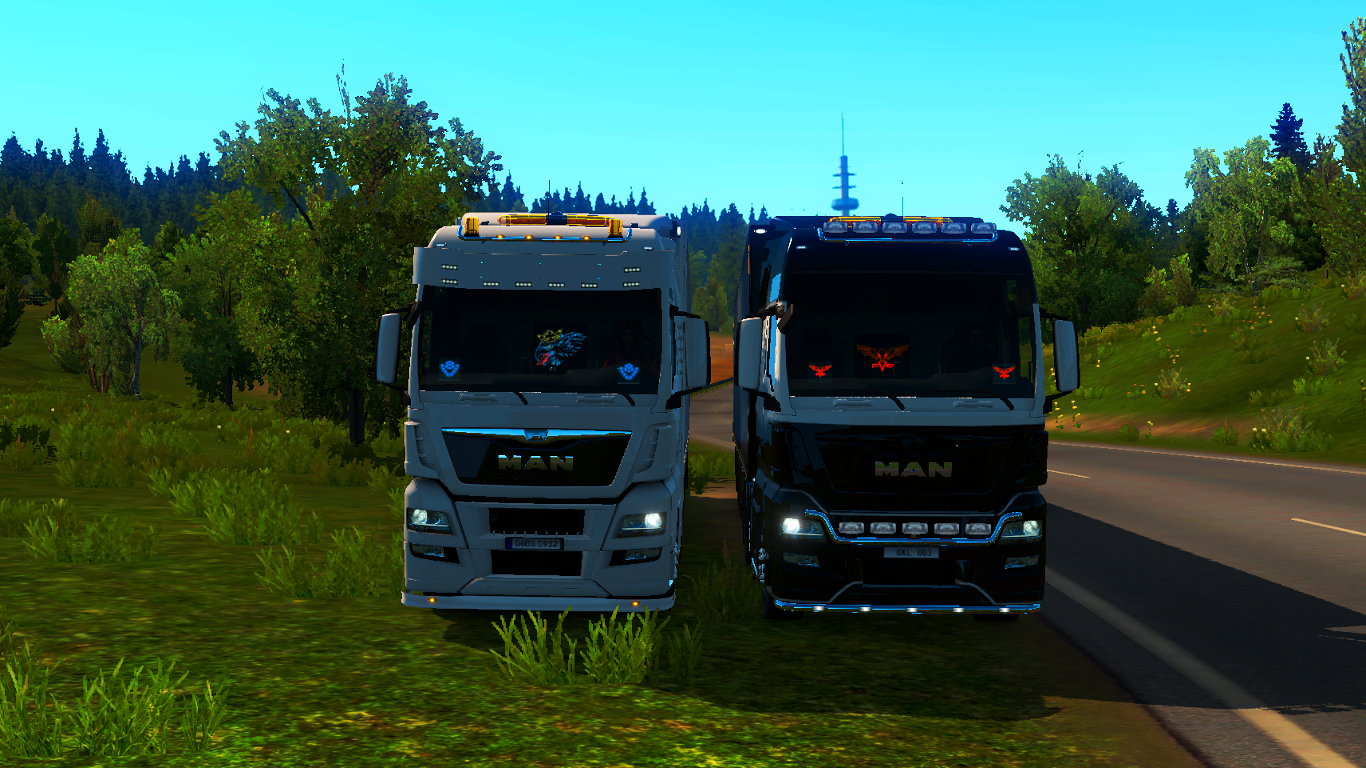 ets2-20190210-205635-00.png