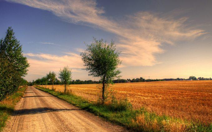 [Image: Field-road-trees-landscape-4k-3840x2160-680x425.jpg]