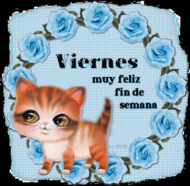 gatito-Vie.png