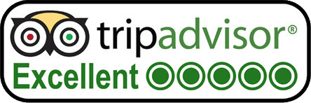 Trip Advisor 5 Star Review