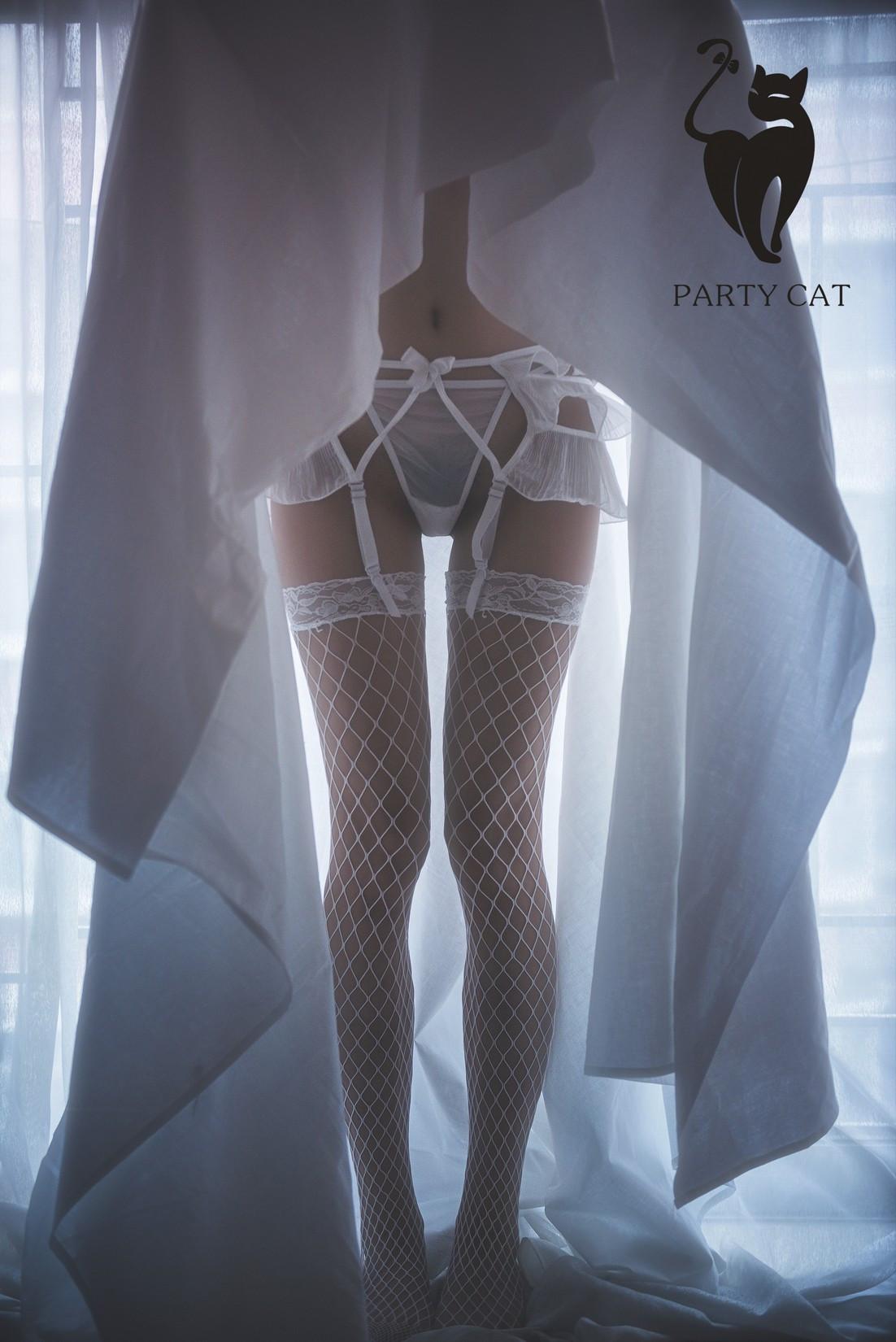 partycat040