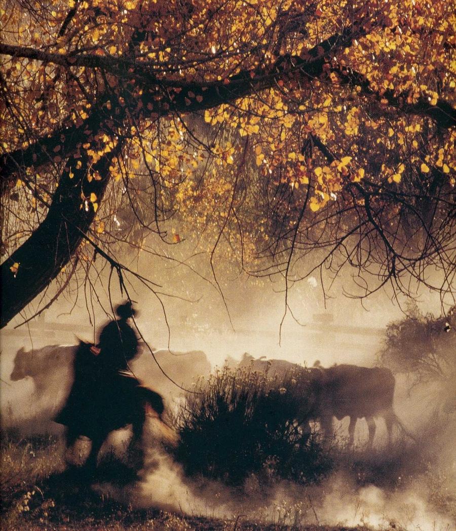fotografii National Geographic 76