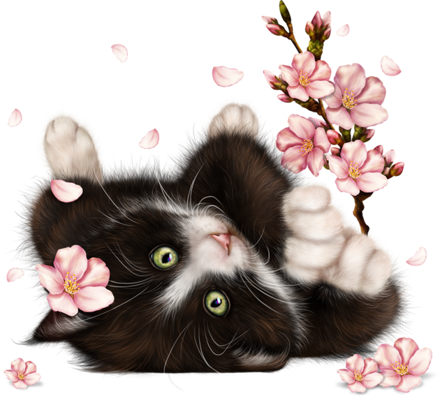 Kitty-in-Blossom-12.png