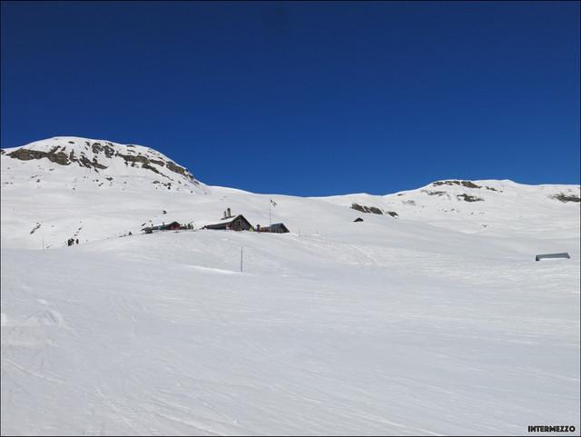 2021-Obersaxen-Skifahren-00086.jpg