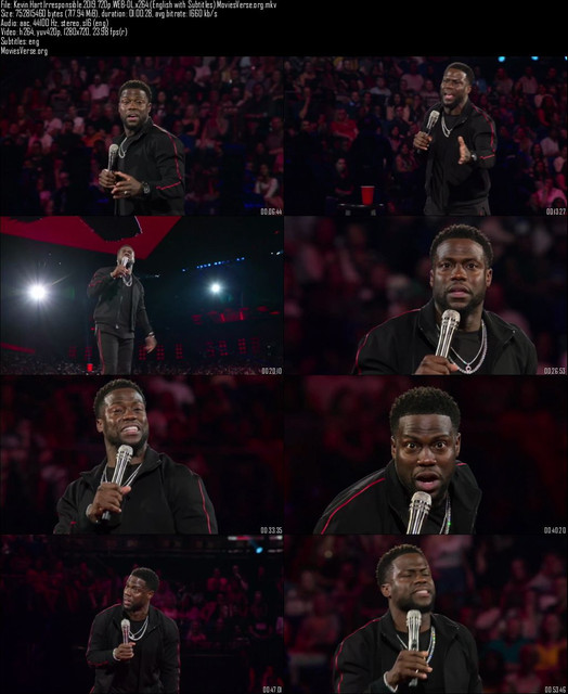 Kevin-Hart-Irresponsible-2019-720p-WEB-DL-x264-English-with-Subtitles-Movies-Verse-org