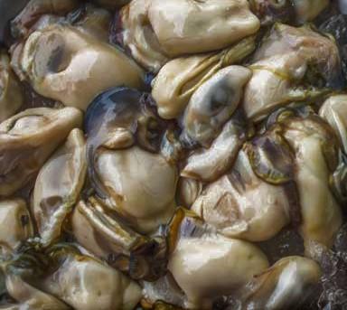 oysters3-2.jpg