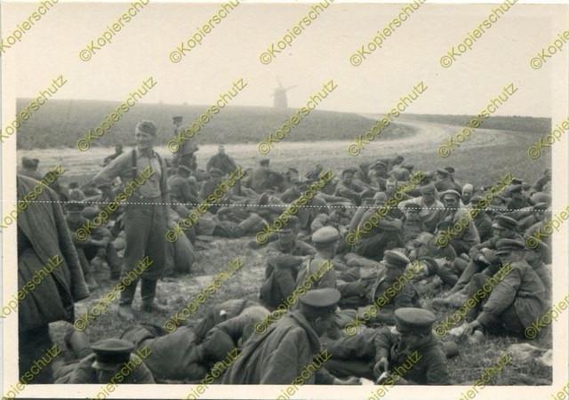 https://i.ibb.co/hY5nQnQ/Foto-18-Panzer-Division-Gefangene-russische-Soldaten-Bobownia-Russland-a.jpg