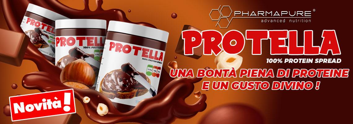 Banner grande 7  Protella