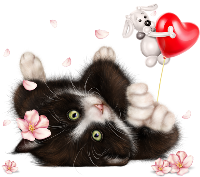 Kitty-in-Blossom-16.png