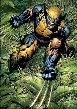 [Image: Marvelwolverine.jpg]