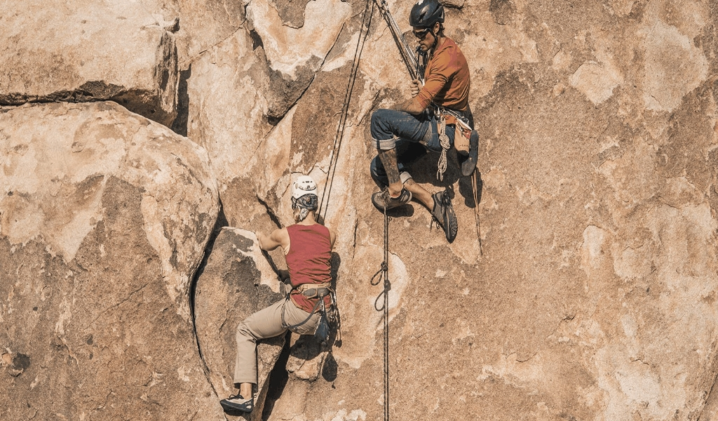 What You Do not Learn About Fry Club Climbing Sports News May Shock You