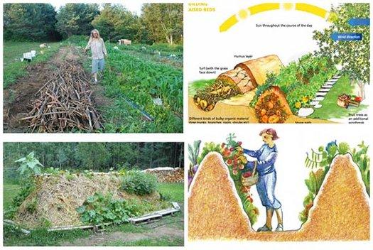 Hugelkultur-The-Ultimate-Raised-Garden-Beds