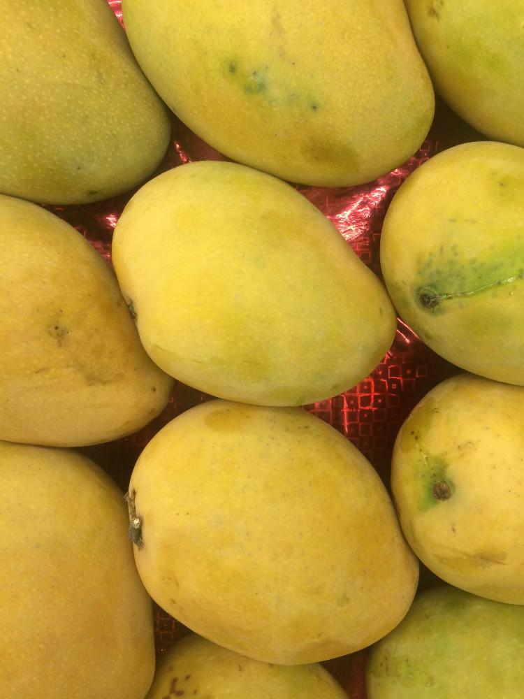 [Image: mango-langra-jpg.jpg]