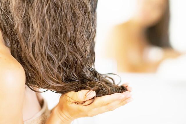 Aloe Vera untuk Rambut Anda: Apa Manfaatnya?