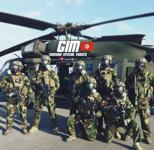 Armée Tunisienne / Tunisian Armed Forces / القوات المسلحة التونسية - Page 15 43951253-1055949671252890-4399642984807661568-n
