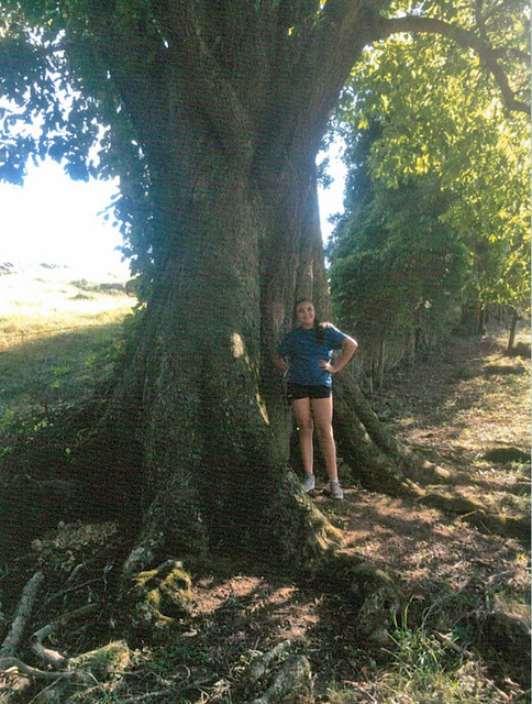 Riley-Musick-Big-Tree-2019-Reserve-1.jpg