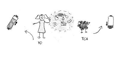 dibujo-paciente