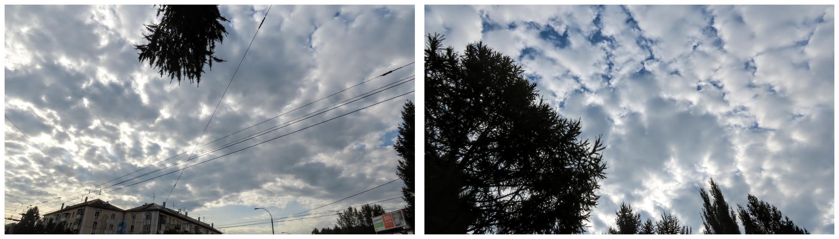 imgonline-com-ua-Collage-Gj-ZQN2t6w-Nc-E8n