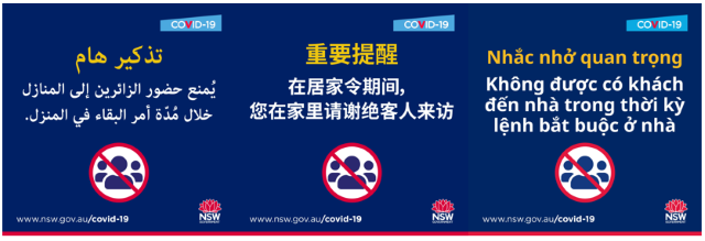 COVID health information in Arabic, Chinese, and Vietnamese