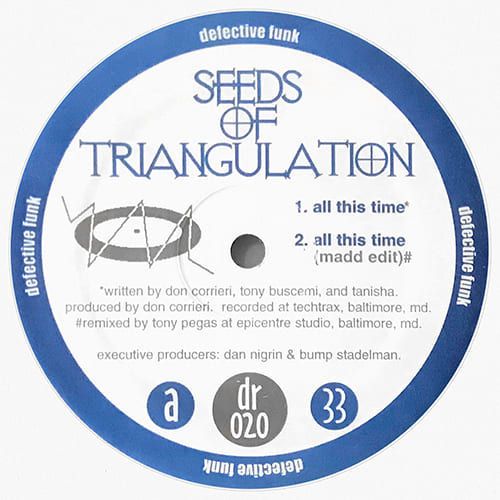 Download Seeds Of Triangulation - All This Time mp3