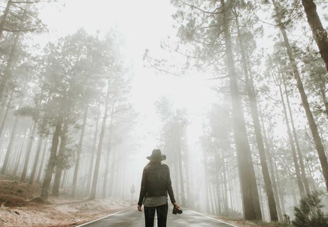 6 Alasan Anda Perlu Berlibur di Hutan