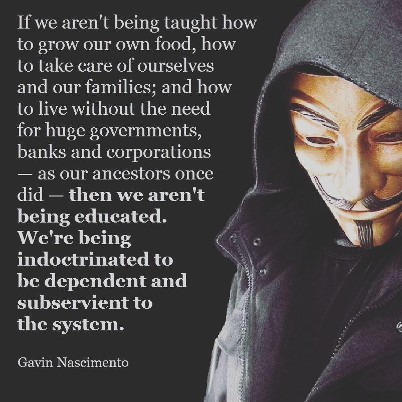 anonymous-vigilantes-20200211-0025