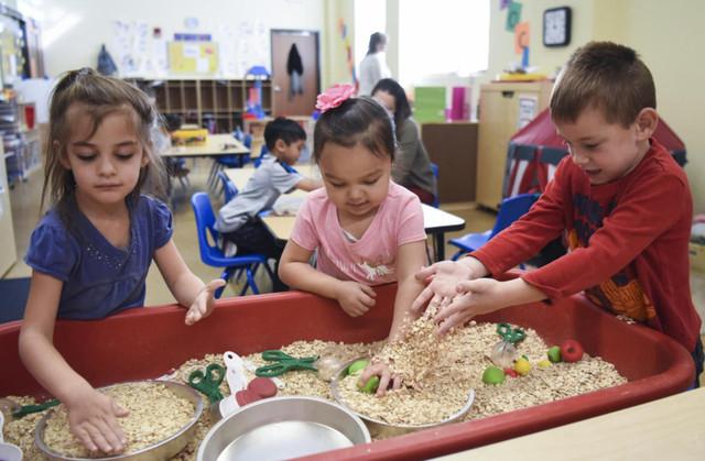 Education Kindergarten