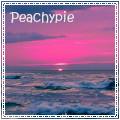 peachypie.jpg