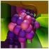 https://i.ibb.co/jDYMF0f/Grapes.png