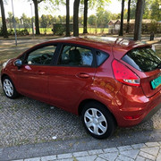 Fiesta1.jpg