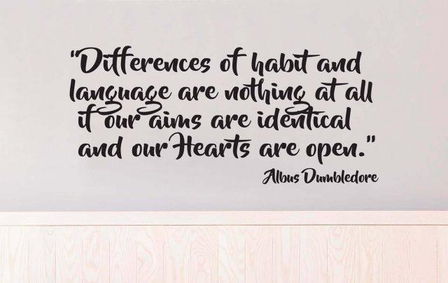 Differences-of-habit-and-language-albus-dumbledore-06-0118-640x404