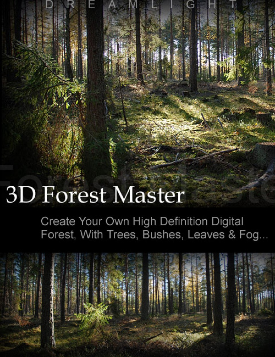 3D Forest Master