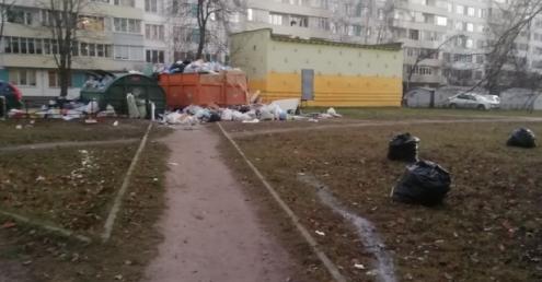 Администрации Фрунзенского района Петербурга плевать на незаконные свалки